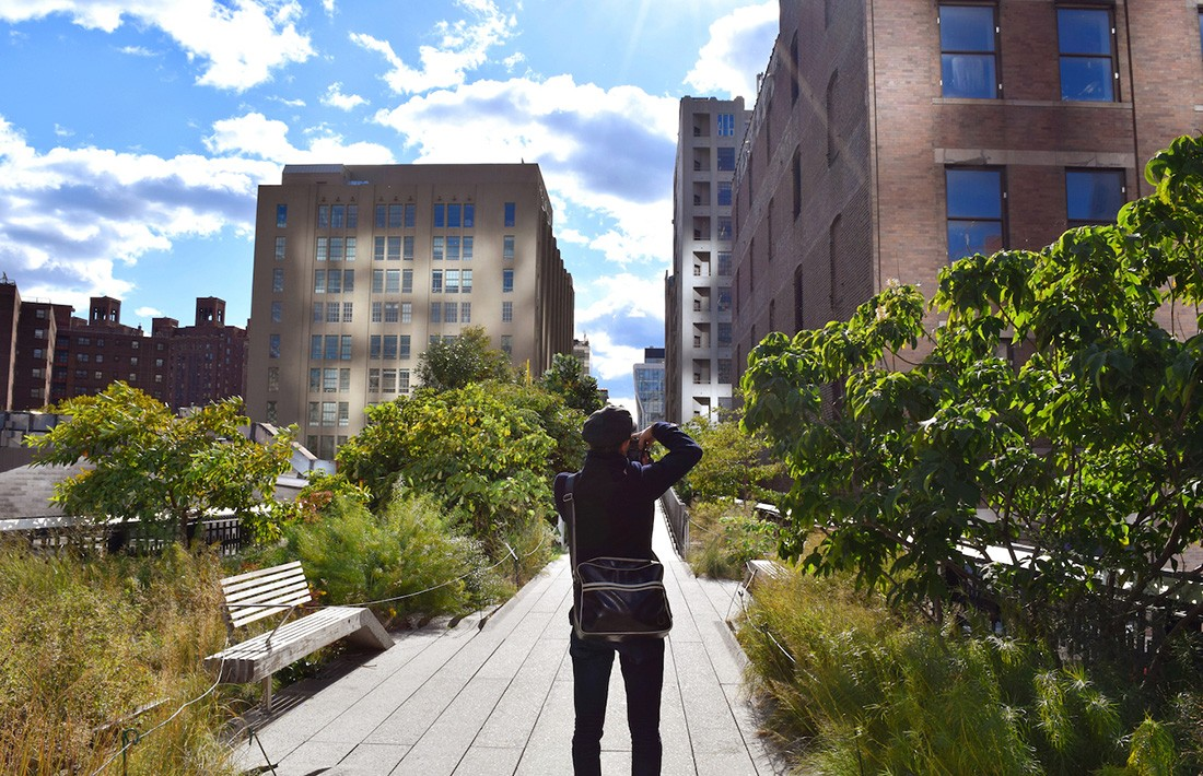 Things to do in NYC: High Line Park