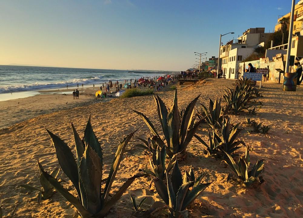 What to do in Tijuana