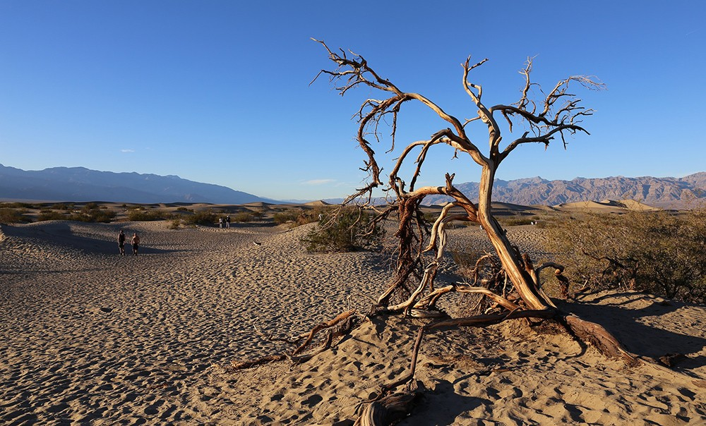 best camping in California: Death Valley National Park