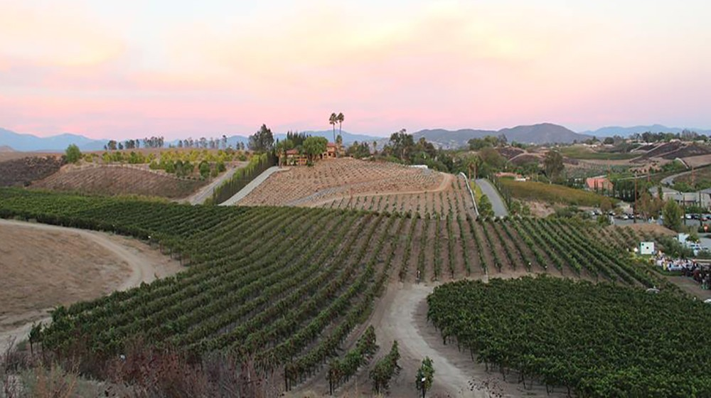 day trip from San Diego: Temecula valley