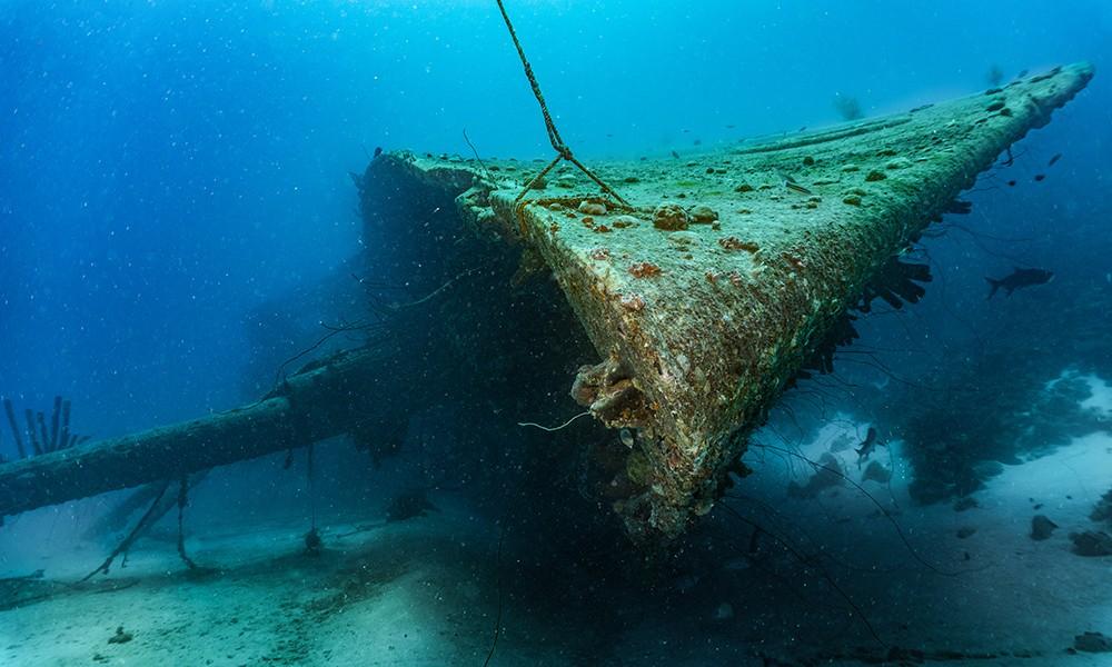 Hilma Hooker wreck dive in Bonaire
