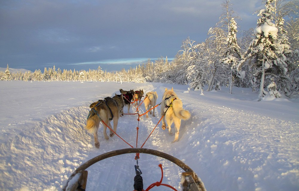 About Lapland, the best place in Finland for nothern lights