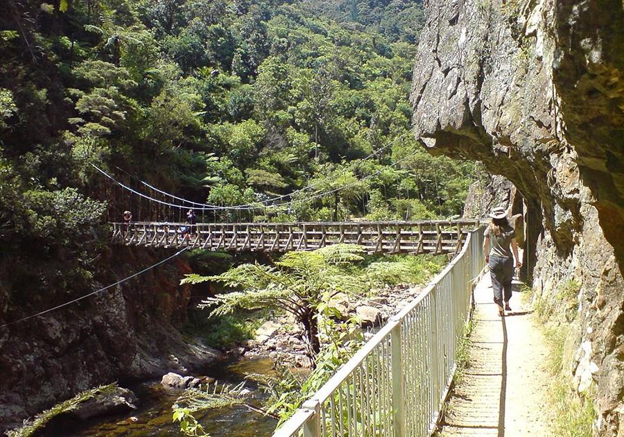 Karangahake Gorge - Part of a 7 days New Zealand North Island itinerary