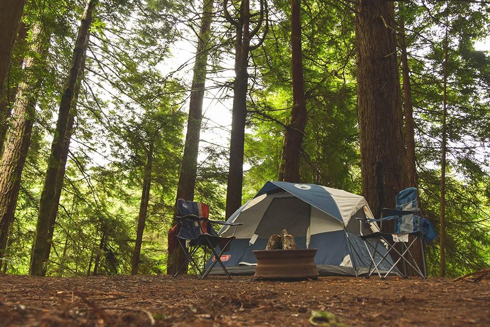 Redwood National Park camping