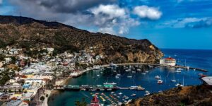 A Perfect Catalina Island Day Trip - the Ultimate Guide
