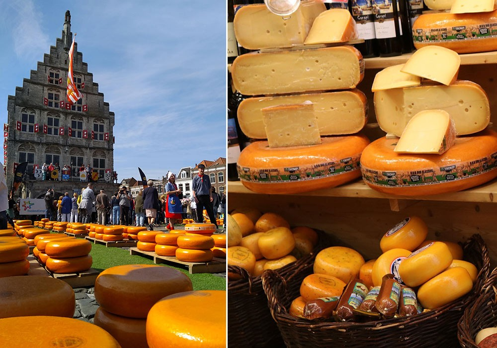 Dutch cheese wheels