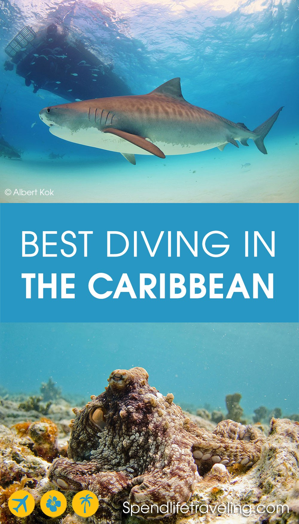 where to go for the best diving in the Caribbean