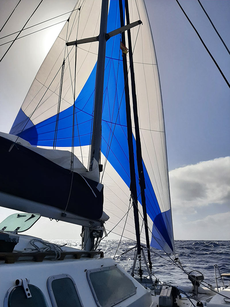 sailing with the spinnaker up