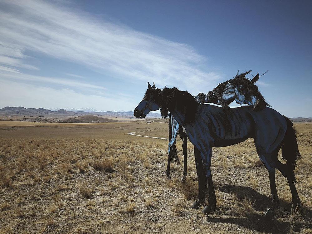 Bleu Horses